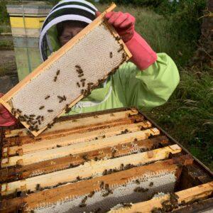 The Artisan Honey Company Photo 2