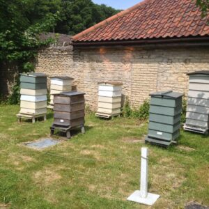 The Artisan Honey Company Photo 9