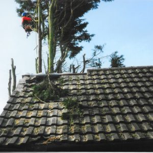 K A Newman Roofing Services Ltd Photo 4