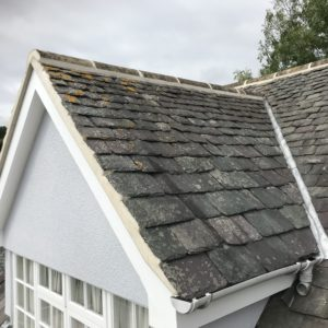 Pro-Trade Roofing Services Photo 25
