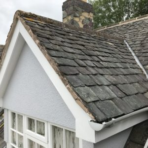 Pro-Trade Roofing Services Photo 24