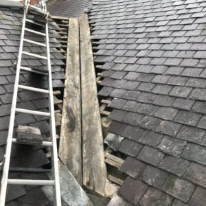 Pro-Trade Roofing Services Photo 52