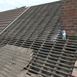 Pro-Trade Roofing Services Photo 21