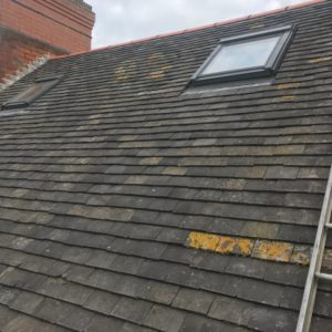Pro-Trade Roofing Services Photo 14