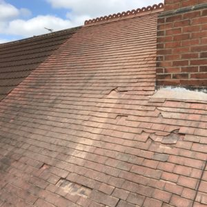 Pro-Trade Roofing Services Photo 20