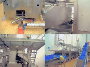 J S V Stainless Steel Fabrications Ltd