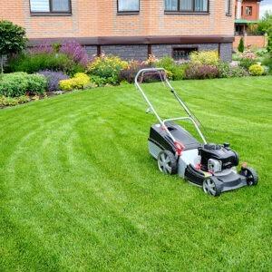 S Downs Landscape Gardener and Property Maintenance Photo 2